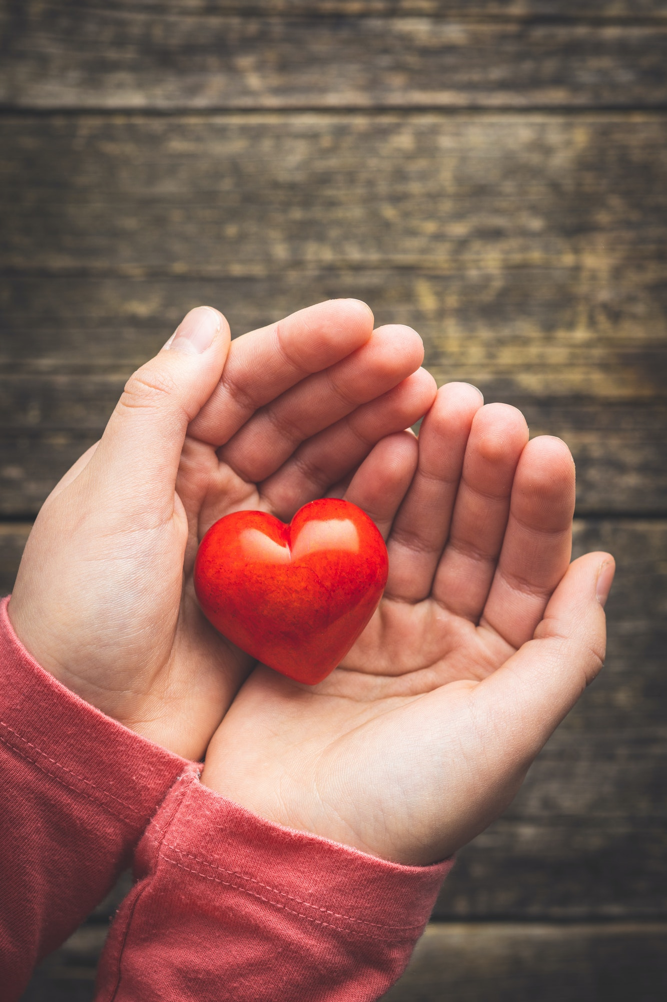 Child hold a red heart in their hands.